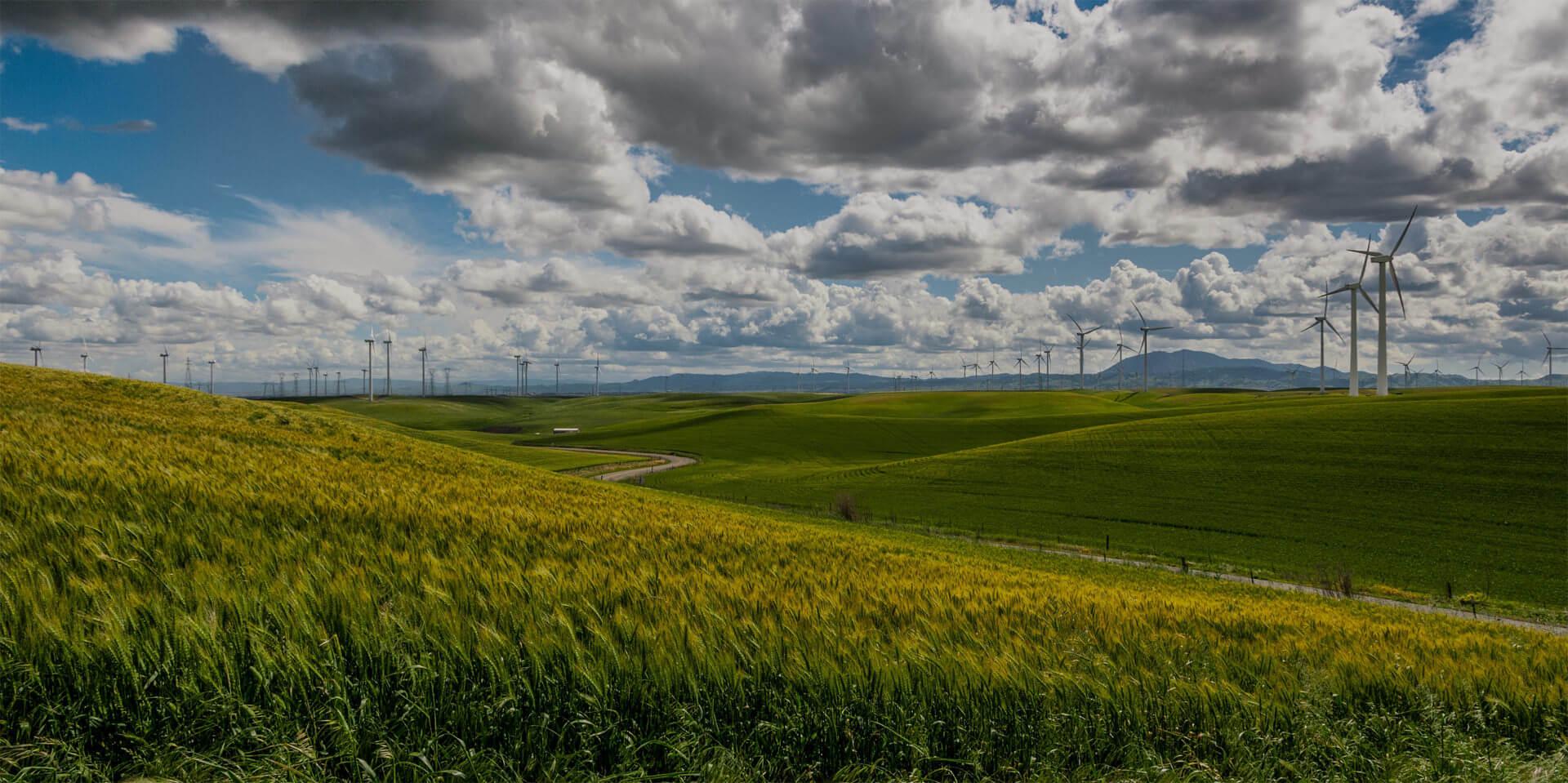 managing-energy-tracking-utilities-sustainability.jpg